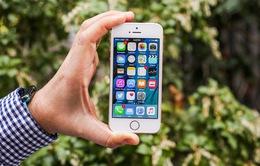 Apple thống lĩnh thị trường smartphone nhờ iPhone