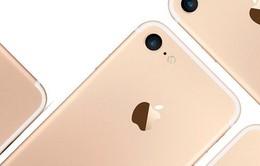 iPhone chỉ nâng cấp toàn diện 3 năm/lần?
