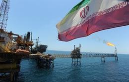 Hạ sâu giá bán dầu thô, Iran quyết giành lại thị phần ở châu Á