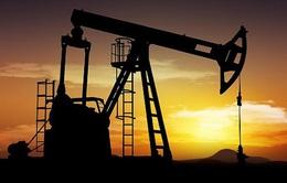 Iran không đóng băng sản lượng dầu trước thềm cuộc họp OPEC