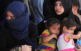 Hơn một nửa số người chạy trốn khỏi Mosul là trẻ em