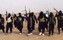 IS gia tăng các vụ bắt cóc dân thường tại Sinai (Ai Cập)
