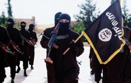 Mỹ bắt giữ đối tượng ủng hộ IS tại New York