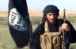 Nga tiêu diệt người phát ngôn của IS tại Syria