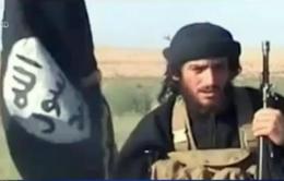 """Mỹ xác nhận tiêu diệt """"Bộ trưởng thông tin"""" của IS"""