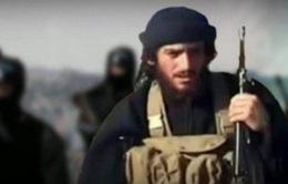 """IS xác nhận """"Bộ trưởng Thông tin"""" thiệt mạng"""