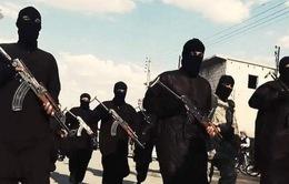 Các Bộ trưởng Quốc phòng họp tại Paris về biện pháp chống IS