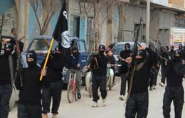 IS tiếp tục tấn công bằng vũ khí hóa học ở miền Bắc Syria