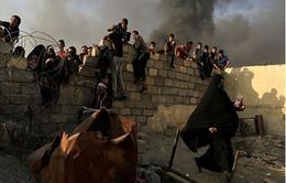 """IS bắt giữ hàng chục nghìn người dân Iraq làm """"lá chắn sống"""""""
