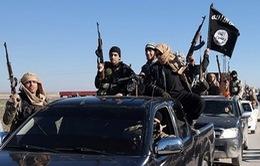IS bắt cóc hơn 250 công nhân tại miền Đông Damascus, Syria