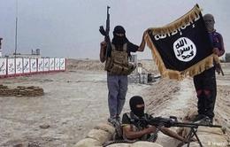Nguy cơ IS tấn công dân thường vì bị mất lãnh thổ