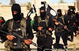 Các nước Hồi giáo lập cơ quan chống khủng bố