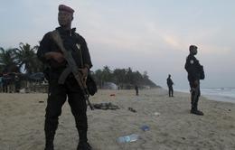 """Al-Qaeda đang """"hồi sinh"""" tại châu Phi?"""