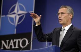 NATO tin tưởng vai trò lãnh đạo của ông Donald Trump