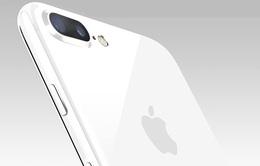 iPhone 7 và iPhone 7 Plus phiên bản Jet White lộ diện qua đoạn video trên Twitter