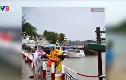 Đưa du khách mắc kẹt tại đảo Cù Lao Chàm về đất liền