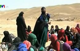 Hàng trăm người mắc kẹt do chiến sự tại Tây Bắc Iraq