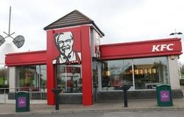 Yêu cầu KFC thắt chặt quy định về kiểm soát kháng sinh