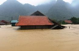 Trích 115 tỷ đồng hỗ trợ 10 tỉnh khắc phục thiệt hại bão lũ