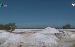 Nhức nhối tình trạng khai thác cát, tàn phá môi trường ở TT-Huế