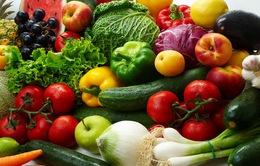 Kinh doanh thực phẩm sạch online lên ngôi trong năm 2016