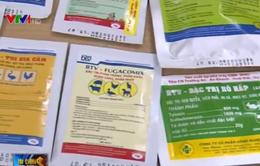 Thuốc kháng sinh kém chất lượng tràn ngập trong chăn nuôi