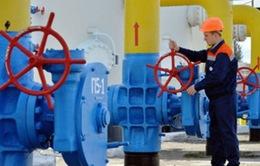 Nga đồng ý giảm giá bán khí đốt cho Ukraine