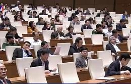 Quốc hội thảo luận về biến đổi khí hậu
