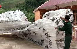 Khinh khí cầu lạ rơi xuống nhà dân ở Quảng Nam không đáng lo ngại
