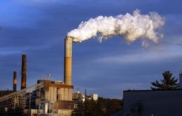 Việt Nam nỗ lực giảm phát thải khí nhà kính