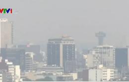 """Mexico City """"bốc hơi"""" 300 triệu USD do các biện pháp hạn chế giao thông"""