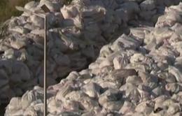 Lebanon thông qua kế hoạch xử lý khủng hoảng rác thải
