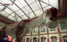 """Công nghệ thực tế ảo """"hồi sinh"""" loài khủng long"""