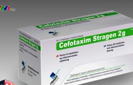 Bộ Y tế khuyến cáo đặc biệt với kháng sinh Cefotaxim
