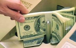 Kiều hối 6 tháng đầu năm chủ yếu đầu tư vào sản xuất kinh doanh