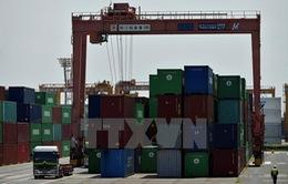 Nhật Bản lần đầu tiên đạt thặng dư thương mại trong hơn 4 năm
