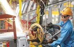 CIEM dự báo kinh tế Việt Nam tăng trưởng 6,33% trong năm 2016
