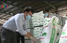 Thanh tra 12 tỉnh, thành về an toàn thực phẩm