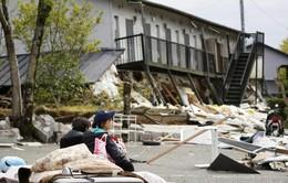 Những thảm họa động đất kinh hoàng nhất trong 1 năm qua