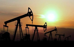 Giá dầu giảm thúc đẩy nhu cầu tiêu dùng của người dân Mỹ