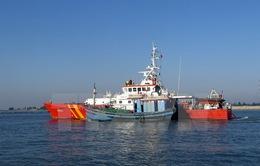 Vụ tàu cá chìm ở vùng biển Hoàng Sa: 5 ngư dân đã trở về an toàn