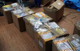 Hà Nội: Phát hiện 11 bưu kiện chứa lá Khat