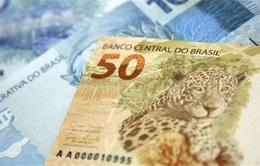 Tỷ lệ lạm phát của Brazil lên mức cao nhất trong 12 năm