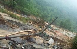 Lào Cai: Loay hoay chuyển đổi cây trồng nông nghiệp sau lũ