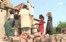 LHQ thúc giục Ấn Độ dỡ bỏ dự luật gây tranh cãi về lao động trẻ em