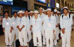 Khó kêu gọi lao động Việt Nam tại Hàn Quốc hết hạn về nước