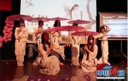Lễ hội Văn hóa Việt Nam tại Vân Nam, Trung Quốc