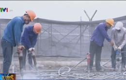 Thanh tra xây dựng quận Ba Đình: Vẫn phá dỡ tòa nhà 8B Lê Trực
