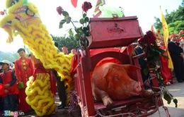 Không chém lợn công khai ở hội làng Ném Thượng