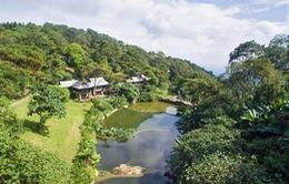 Resort không phép tại Vườn Quốc gia Ba Vì - Kết quả của sự nể nang?